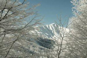 Vidiciatico Agenzia Immobiliare Belvedere vacanze investimenti piccoli appartamenti residence verde holydays italy appennino neve 1
